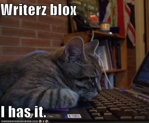 writers-block-cat
