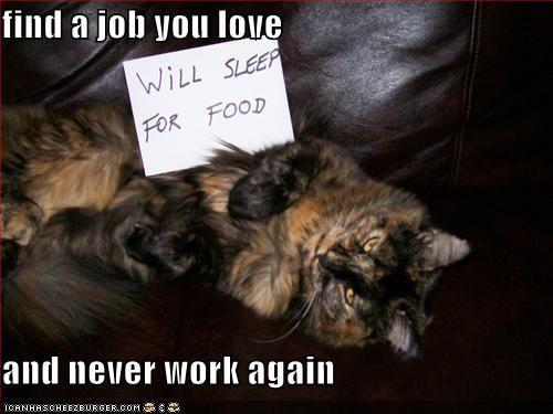 find-a-job-you-love