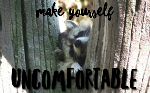 uncomfortable-raccoon